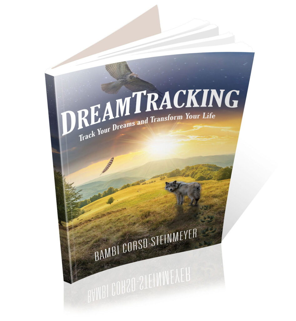 DreamTracking